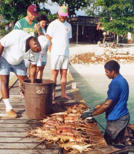 Lowell selecting lobster for dinner, 1990