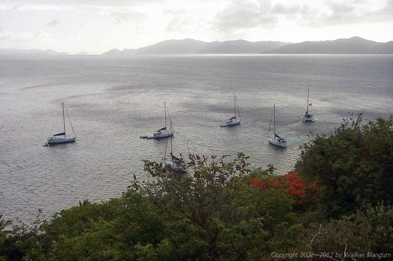 Panorama of Cooper Island Manchioneel Bay from the top of Cooper Island.