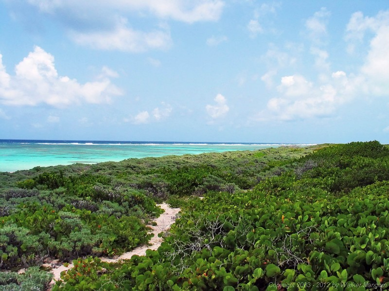 Panorama from Nancy and Walker's secret beach on Anegada