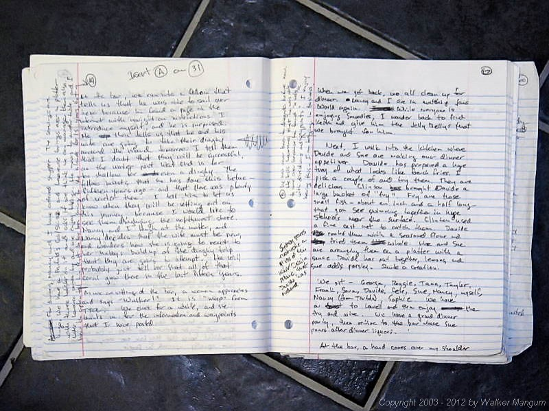 Walker's handwritten journal - 72 pages