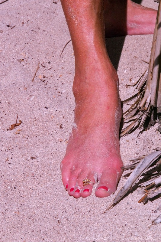 Toes at Eugene's beach bar at Smuggler's Cove.