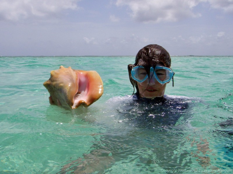 Cele with a conch.