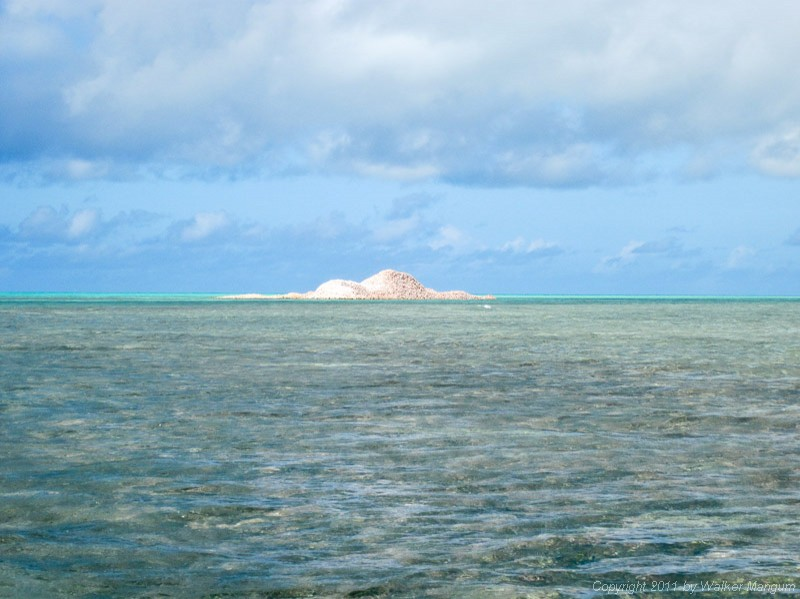 Conch shell mound at east end.