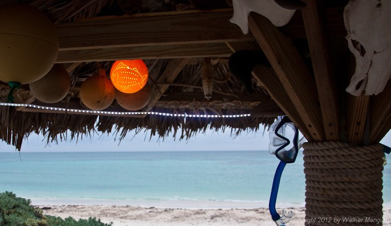 A little bit of island art. Fishing float from the beach becomes palapa light.