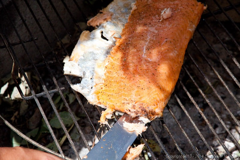 Salmon coming off the grill